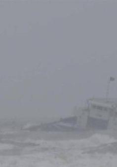 Cứu nạn tàu hàng quốc tế trên biển Bình Thuận