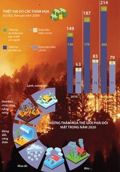 [INFOGRAPHIC] Thế giới thiệt hại 187 tỷ USD do thảm họa trong năm 2020