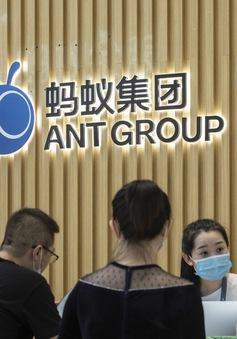 Trung Quốc thắt chặt kiểm soát các công ty fintech