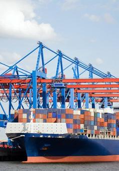 Hãng tàu container phải minh bạch giá cước vận chuyển