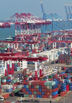 Ngành xuất khẩu Trung Quốc hưởng lợi nhờ nhu cầu từ các thị trường lớn