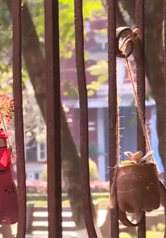 Thừa Thiên - Huế: Học sinh các trường học góp phần bảo vệ môi trường