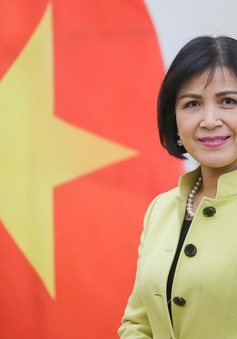 Phái đoàn Việt Nam chủ trì Ủy ban điều phối ASEAN tại Geneve về công tác của WTO