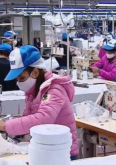 Kiểm soát chất lượng khẩu trang vải kháng khuẩn