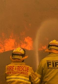 Bang New South Wales, Australia đã khống chế được cháy rừng