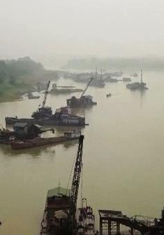 Tái diễn tình trạng khai thác cát trái phép tại sông Lô