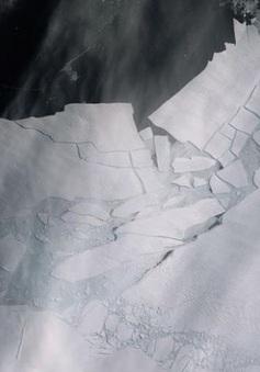 """Khuyến cáo về tình trạng """"không thể đảo ngược"""" tại Nam Cực"""