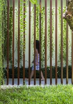 Mang thiên nhiên trải dài trong mỗi góc nhà