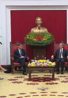 Việt Nam mong muốn thúc đẩy quan hệ đối tác toàn diện, phát triển thực chất và hiệu quả với Mỹ