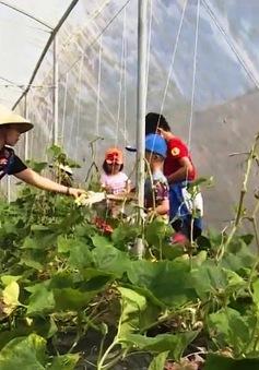Trải nghiệm nông trại hữu cơ ở Hậu Giang