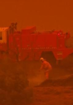 Australia kêu gọi hành động khẩn cấp trước tình trạng biến đổi khí hậu