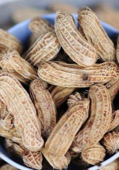 Mỹ phê duyệt loại thuốc uống đầu tiên giúp giảm dị ứng đậu phộng