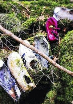 Khu rừng gây ám ảnh nhất Nhật Bản