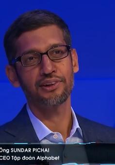 CEO của Alphabet: AI là tương lai, nhưng phải có luật chơi