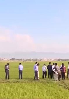 Bộ Nông nghiệp và Phát triển nông thôn kiểm tra tình hình hạn hán tại Bình Định
