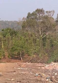 """Mùa """"đốt rác"""" ám ảnh người dân Đắk Nông"""