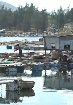 Tháo dỡ lồng bè không phép tại vịnh Mân Quang (Đà Nẵng)
