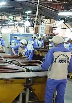 Ngành gỗ cần đa dạng hóa nguồn nguyên phụ liệu