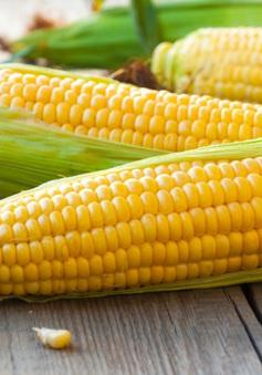 Mỹ đề nghị Việt Nam giảm thuế nhập khẩu một số mặt hàng nông sản