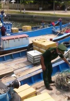 Đà Nẵng: Bắt 5 tàu cá đánh bắt trái phép bằng bộ kích điện