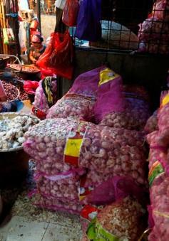 Indonesia mở cửa cho các mặt hàng hành, tỏi nhập khẩu