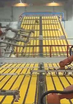 Doanh nghiệp tìm cách ứng phó với việc thiếu nguyên liệu sản xuất
