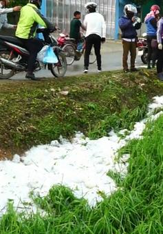 Giông lốc kèm theo mưa đá gây thiệt hại tại miền núi phía Bắc