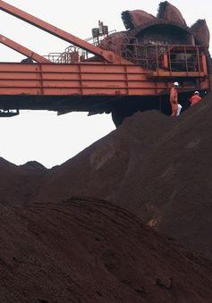 Giá quặng sắt giảm mạnh do hoạt động kinh tế toàn cầu sụt giảm