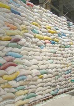 An ninh lương thực quốc gia được đặt lên hàng đầu trong dịch COVID-19