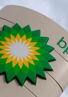 BP sẽ không cắt giảm việc làm trong ba tháng tới bất chấp giá dầu lao dốc