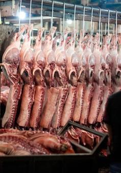Nguồn cung thịt lợn vẫn bị thiếu hụt