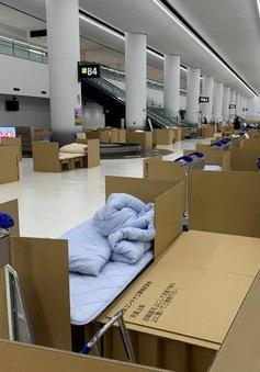"""""""Khách sạn bằng bìa carton"""" tại sân bay Nhật Bản"""
