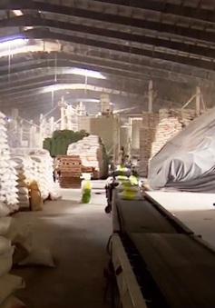 Cần Thơ đề xuất cho thông quan 26.000 tấn gạo đang nằm chờ tại cảng