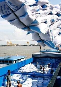 Hiệp hội Lương thực Việt Nam kiến nghị ưu tiên thông quan xuất khẩu gạo đã tập kết tại cảng
