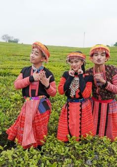 """Ẩm thực kỳ thú: Mạc Văn Khoa, Đỗ Duy Nam cover """"Để Mị nói cho mà nghe"""" cực hài hước"""