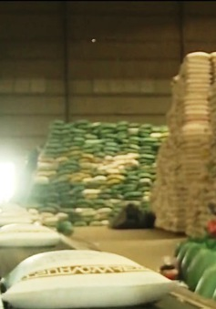 Đã có hướng dẫn đăng ký tờ khai xuất khẩu gạo nếp