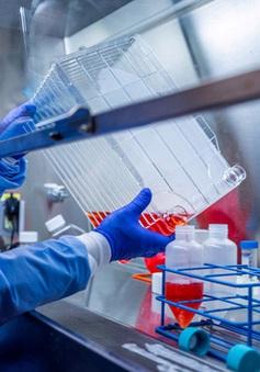Thử nghiệm vaccine phòng COVID-19 cho hiệu quả khả quan
