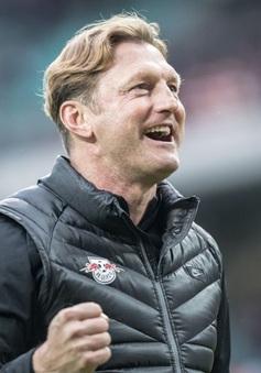 """""""Thảm họa"""" Southampton tiết lộ về doping tinh thần đến từ Sir Alex"""