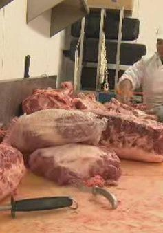 Canada quan ngại về nguồn cung thịt giữa đại dịch COVID-19