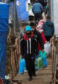 Hy Lạp: Trại tị nạn thứ 2 có người nhiễm COVID-19