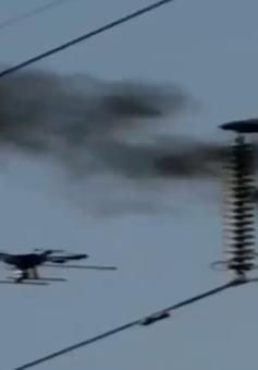 Xử lý nóng sự cố lưới điện 220kV Đồng Hới - Đông Hà