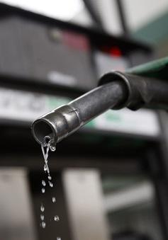 Syria cắt giảm trợ giá nhiên liệu