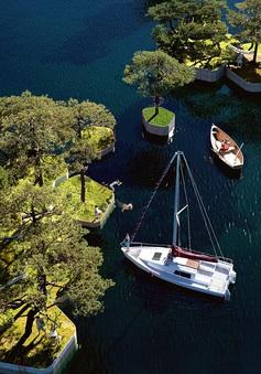 """Độc đáo, hệ thống """"công viên nổi"""" ấn tượng vừa được ra mắt tại Copenhagen (Đan Mạch)"""