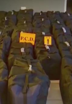 Costa Rica thu giữ hơn 1 tấn cocaine giấu trong container