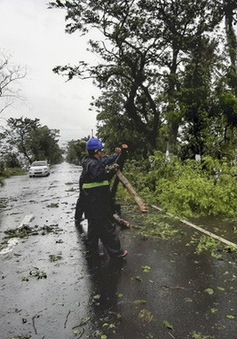 Bão Vongfong gây thiệt hại nặng nề tại Philippines