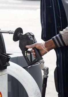 Giá dầu bật tăng nhờ kỳ vọng vaccine COVID-19
