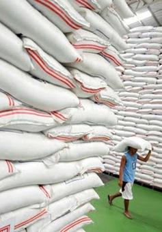 """Nhiều doanh nghiệp """"xù"""" hợp đồng gạo dự trữ đợt 1 vẫn trúng thầu đợt 2"""