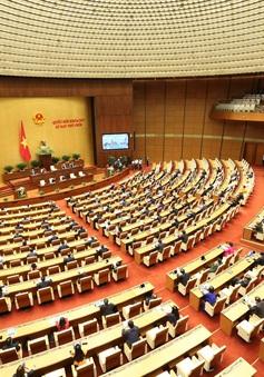 Hôm nay (21/5), Quốc hội thảo luận trực tuyến về dự án Luật Doanh nghiệp (sửa đổi)
