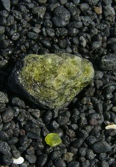 """Ứng phó biến đổi khí hậu: Hấp thụ và """"chôn chặt"""" CO2 dưới đáy biển"""