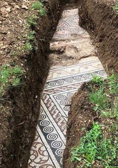 Phát hiện di tích biệt thự La Mã có niên đại hơn 2000 năm
